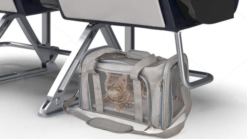 A tabby cat in the Henkelion Cat Carrier under a chair at the airport.