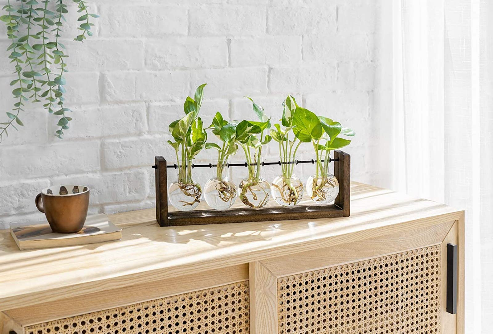 A five-bulb glass and wood planter sitting on a wood cabinet