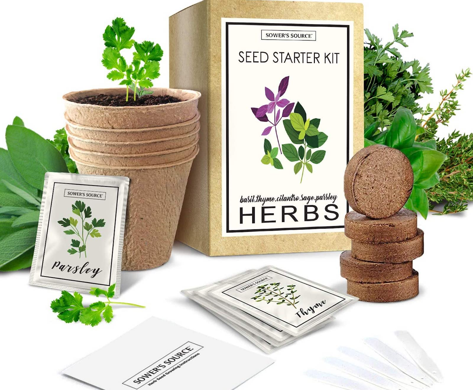 A full herb garden kit, with pots, herbs, seed packets, and a labeled box