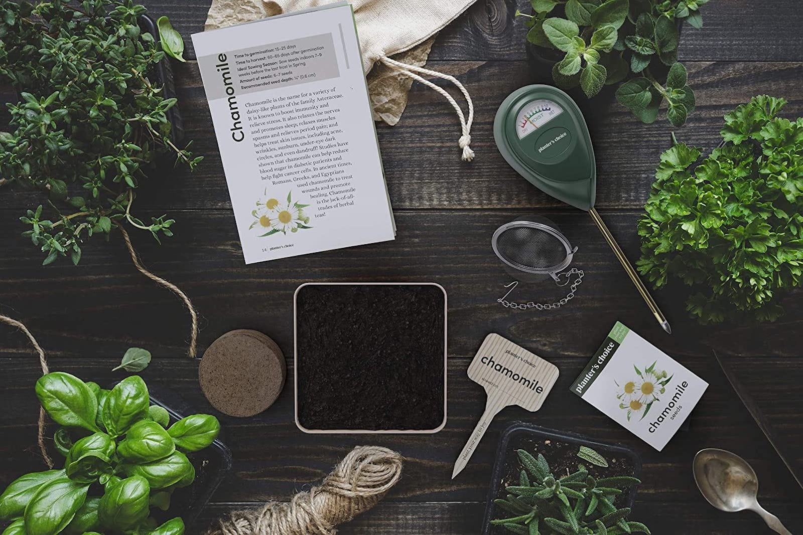 Herbs scattered across a wooden surface, along with a pot of soil and a growing guide
