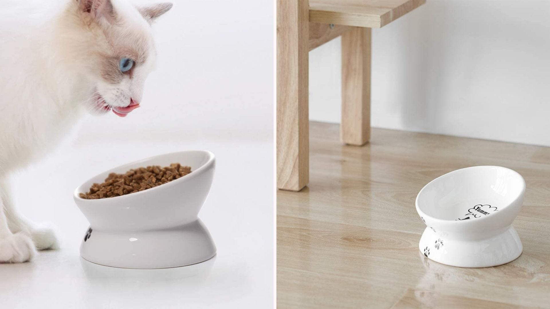 A cat eating from the Y YHY tilted food bowl, and an empty one on a hardwood floor.
