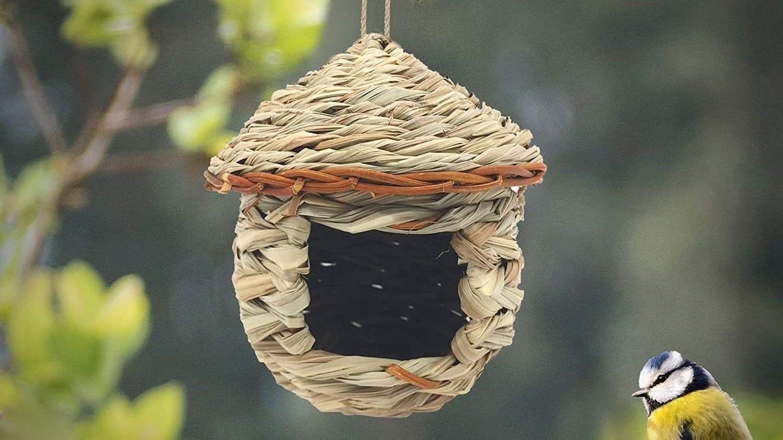 Cute woven bird nest in a tree.