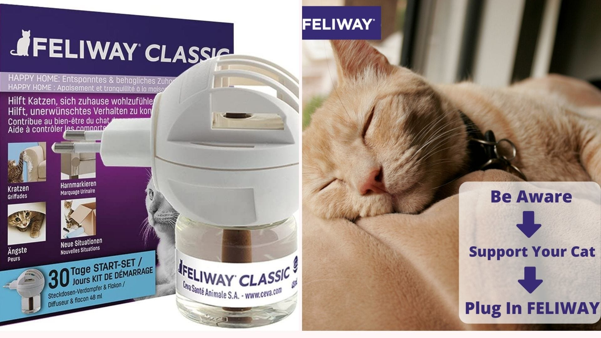 The Feliway Classic cat calming diffuser and an orange tabby cat sleeping on a blanket.