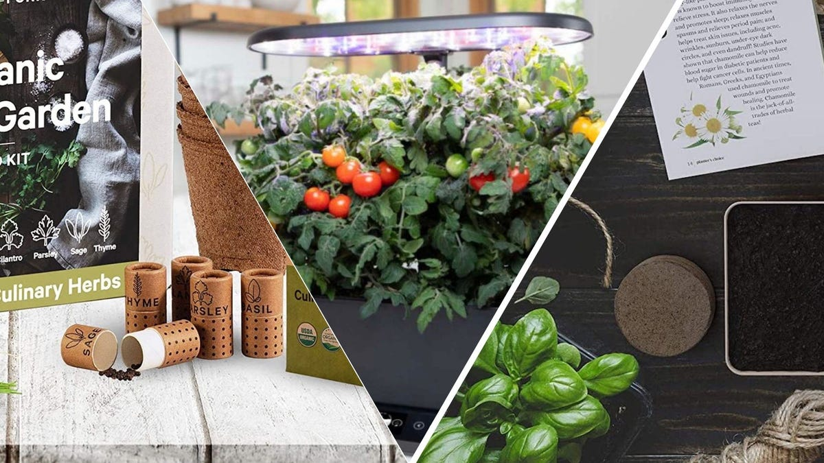 A variety of herb garden kits
