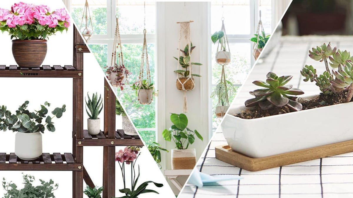 A wood tiered plant stand, a window with hanging plants, a white succulent planter
