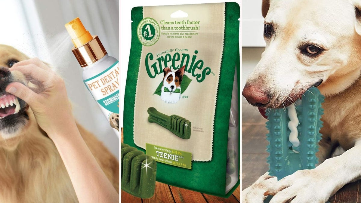 Pet Dental Spray, a pack of Greenies, and a dental dog care toy.