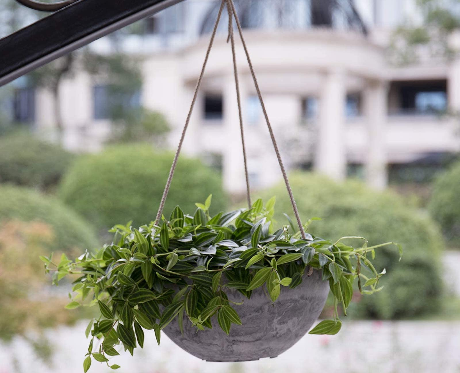 The gray marble La Jolie Muse planter with a leafy green plant hanging on a balcony.