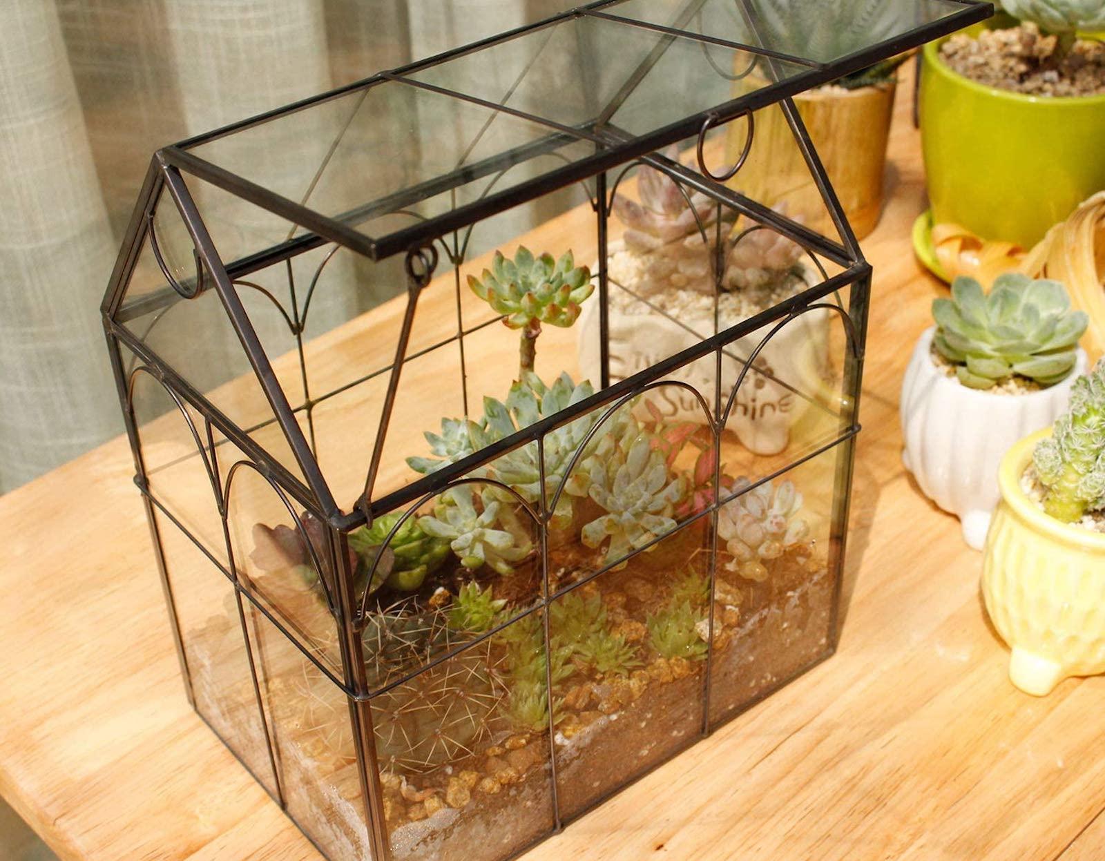 Metal terarium filled with succulents and cactus.