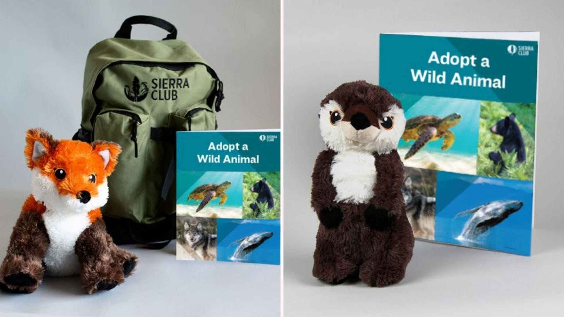 The Red Fox and River Otter adoption kits.
