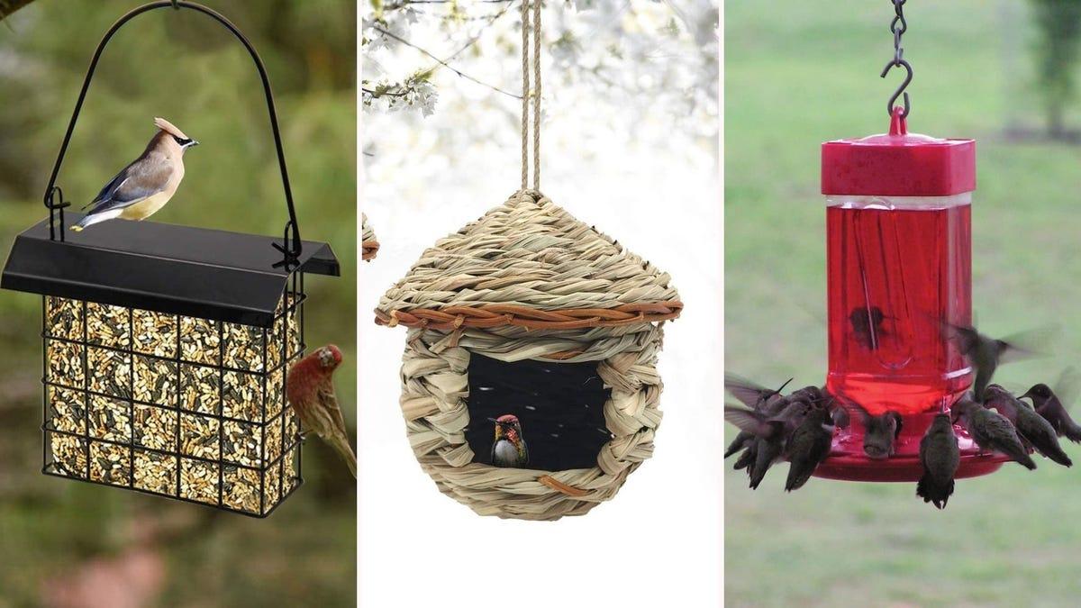 A wire birdfeeder, a birdhouse, and a hummingbird feeder.