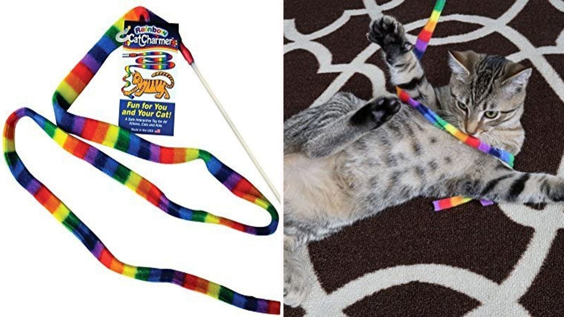A gray and black tabby cat lying on his back with the Cat Dancer rainbow toy wrapped around his chest.