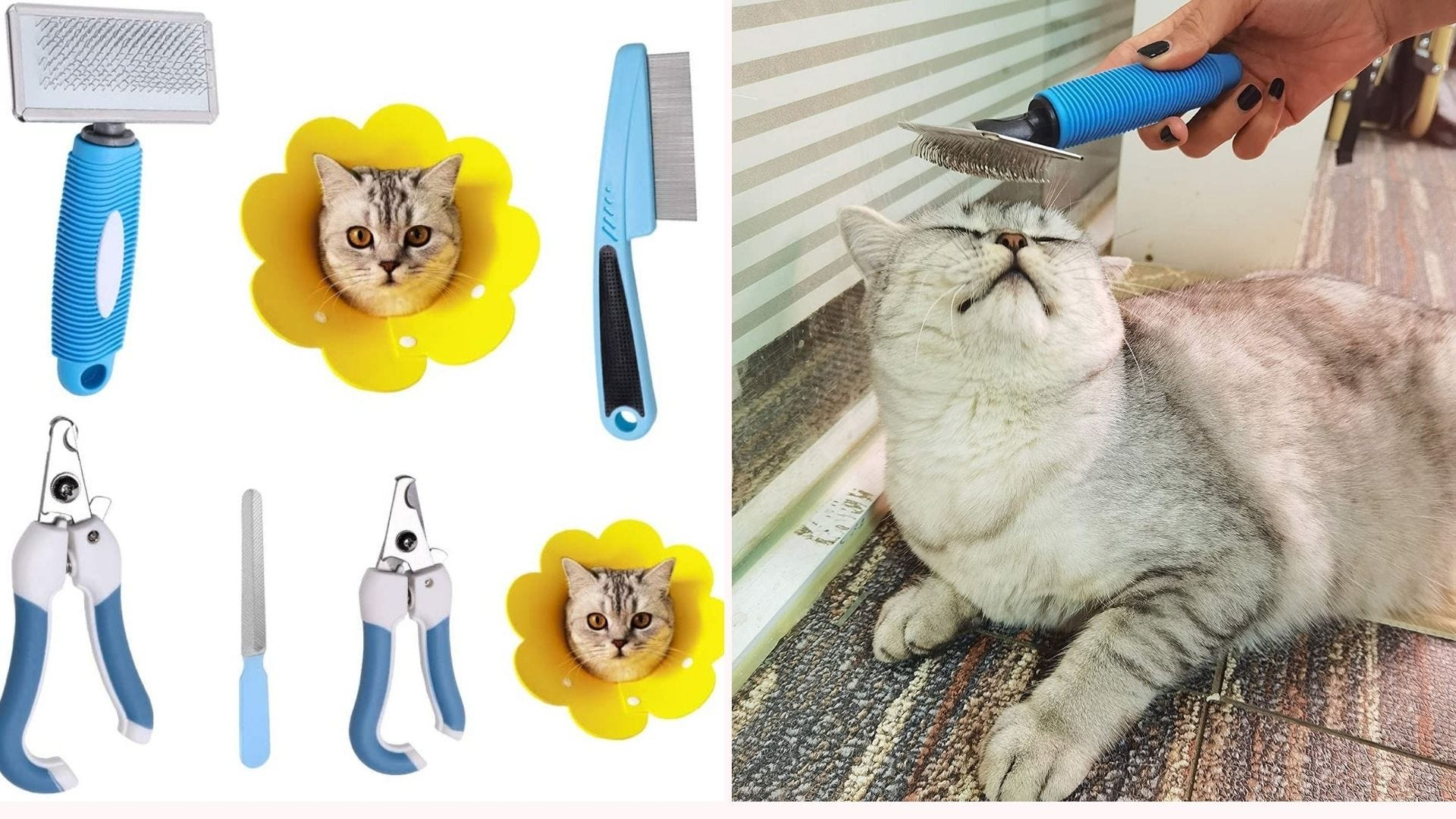 Cat grooming supplies and a cat getting a brushing.