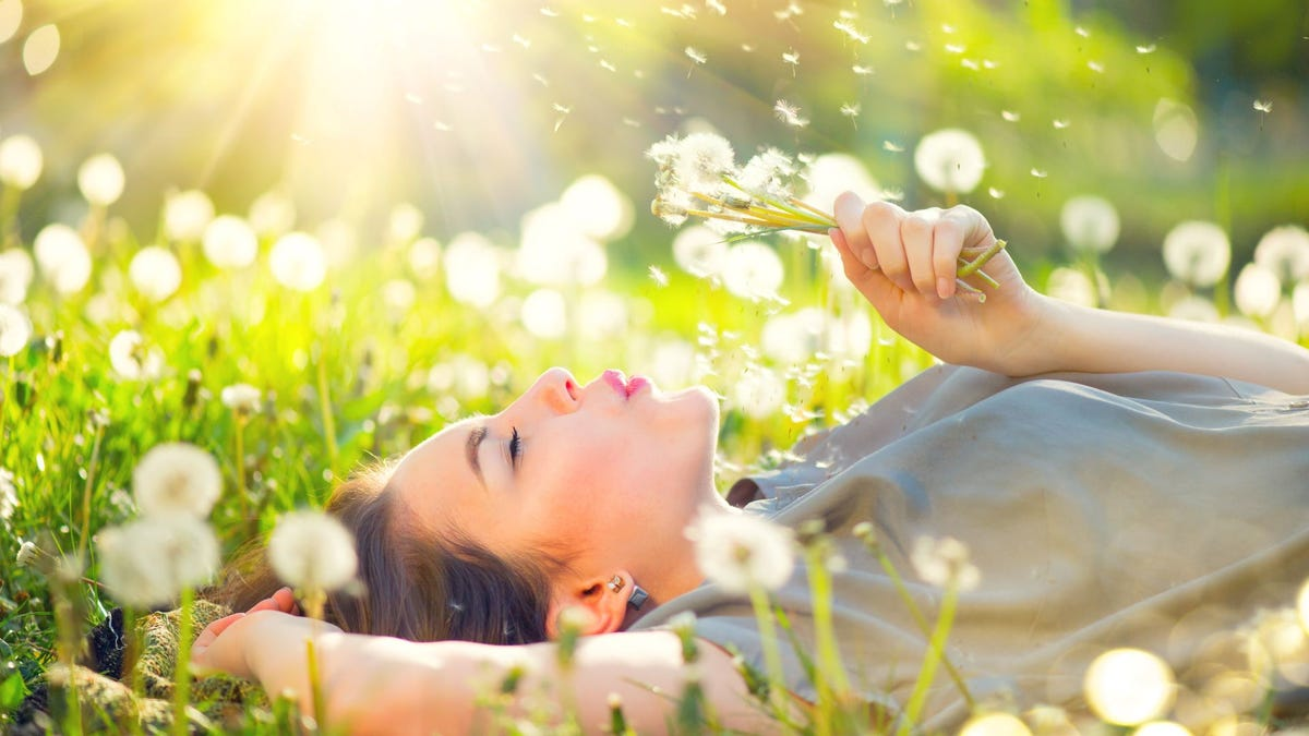 A woman lying in a field, blowing on a dandelion without suffering from allergies.