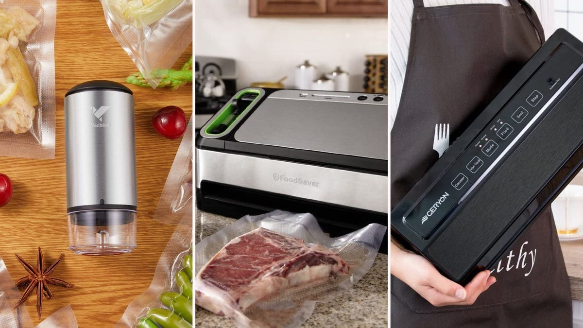 The Vacbird, FoodSaver Two-in-One, and Geryon vacuum sealers.