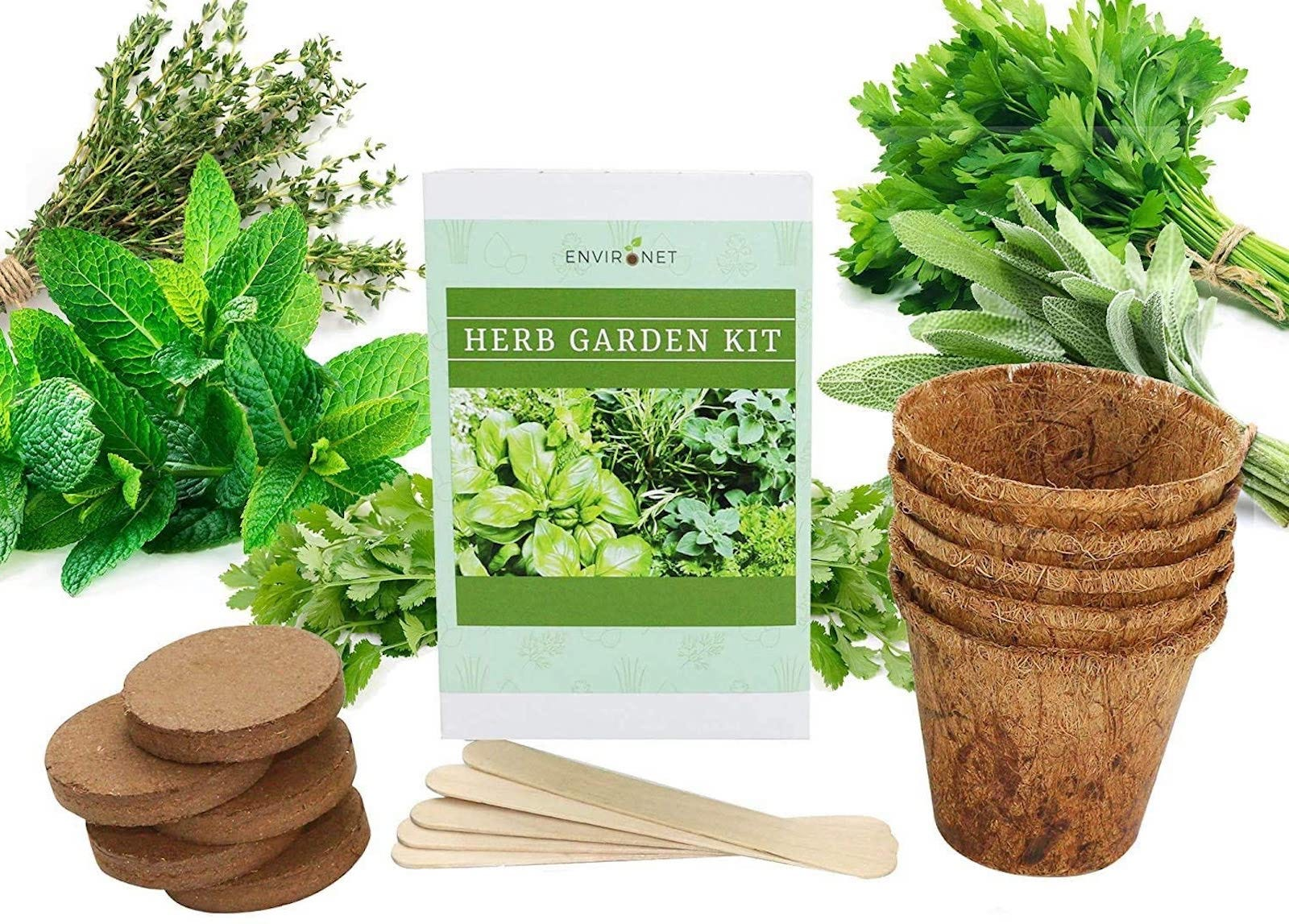 """An assortment of herbs and peat pots surrounding a label reading """"Herb Garden Kit"""""""
