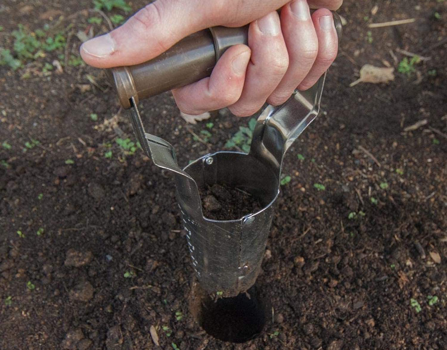A hand holding a metal bulb planter above a hole in the garden dirt