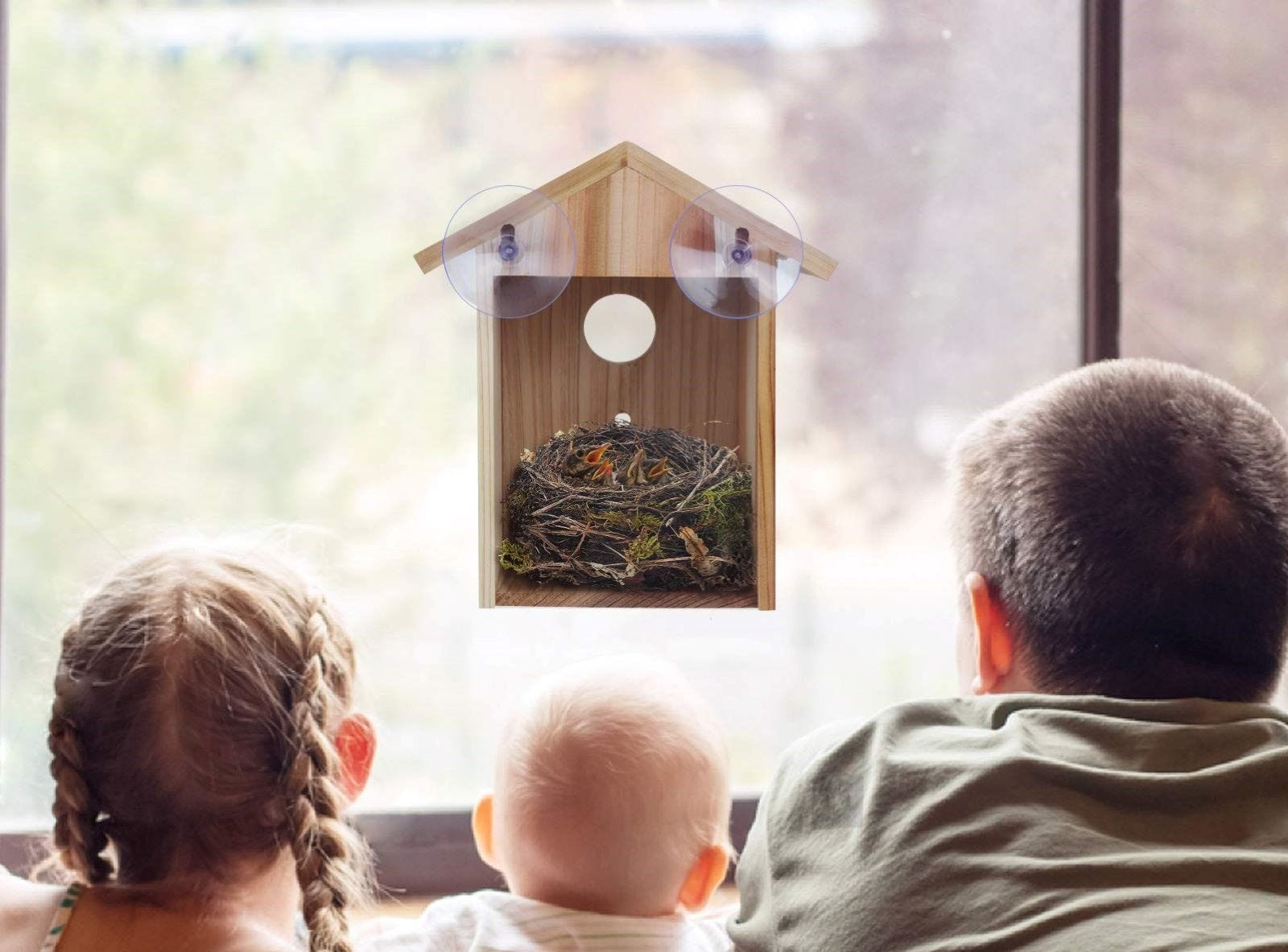 Three children looking at baby birds in a nest in a the ColorfulLaVie Window Birdhouse.