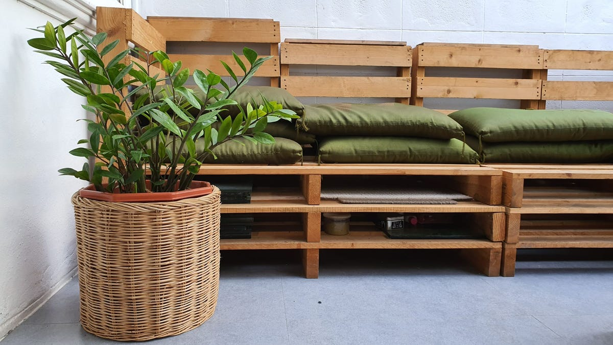 A plant in a rattan pot next to a wooden bench.