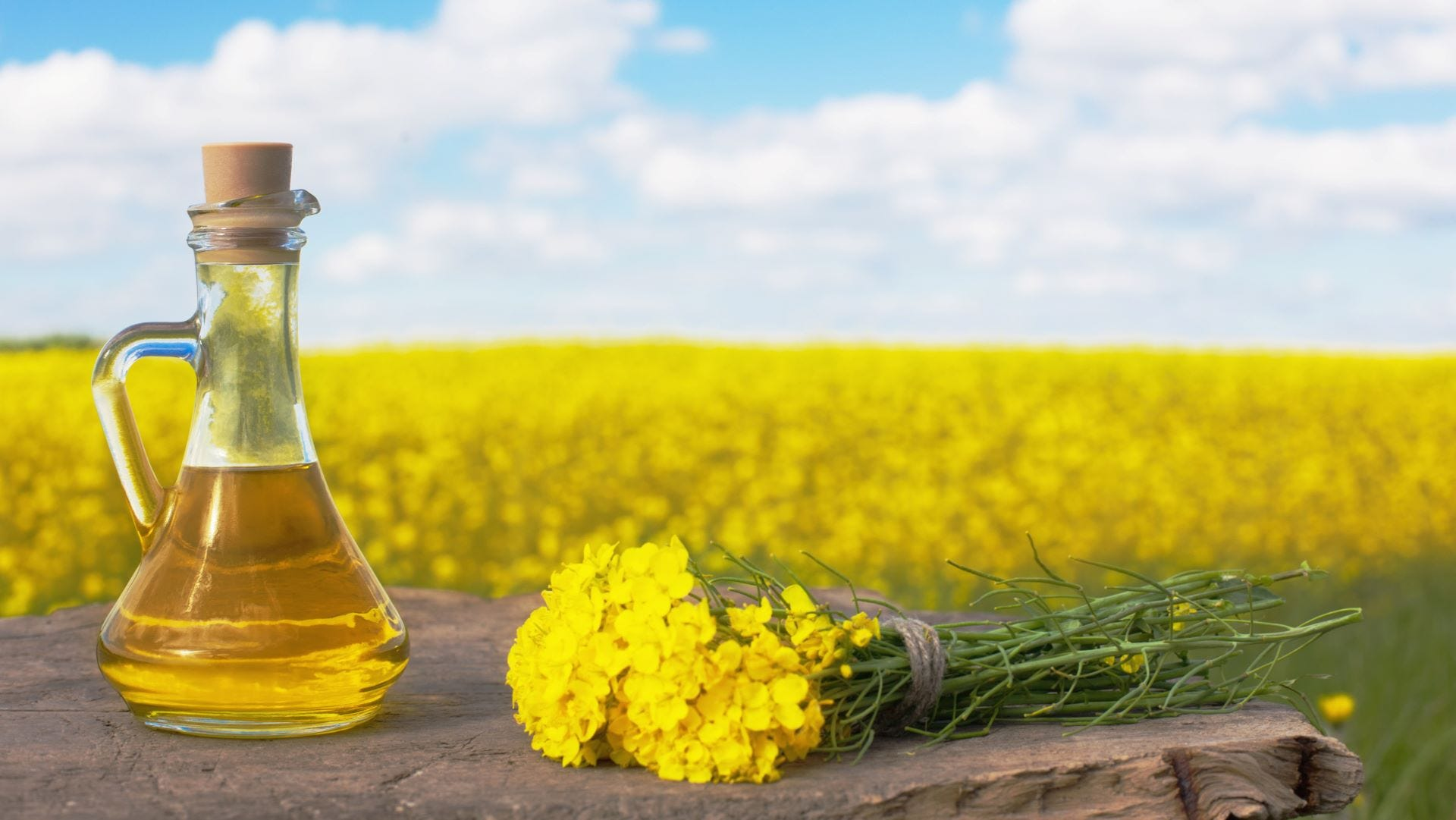 A bottle of canola oil with a field of rapeseed flowers behind it.