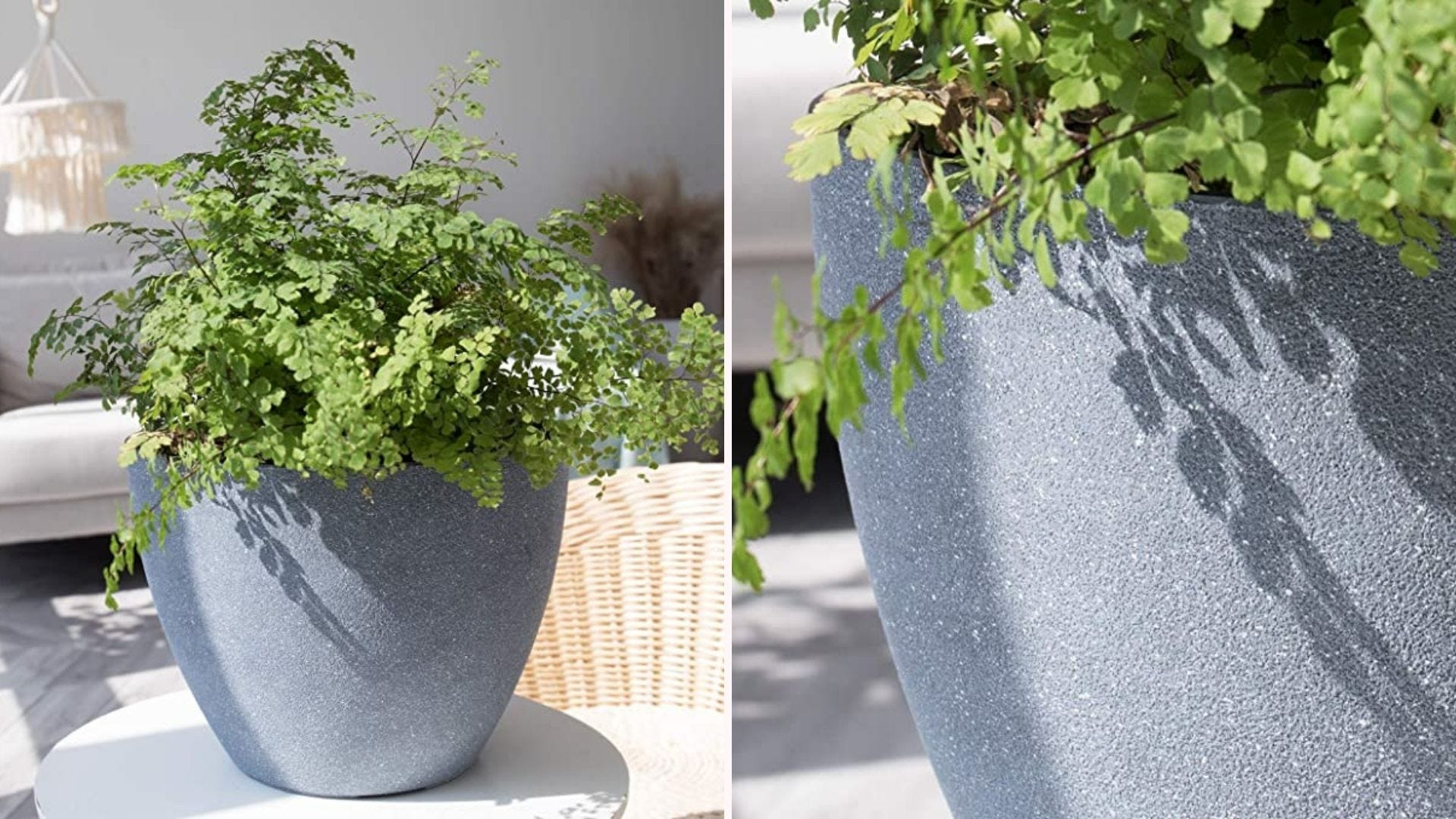 Side-by-side images of greenery in a durable gray planter.
