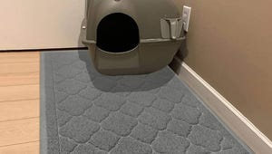 The Best Cat Litter Mats You Can Buy