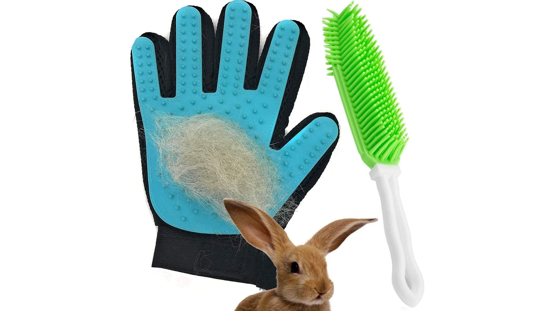 Cute bunny next to a grooming glove and brush.