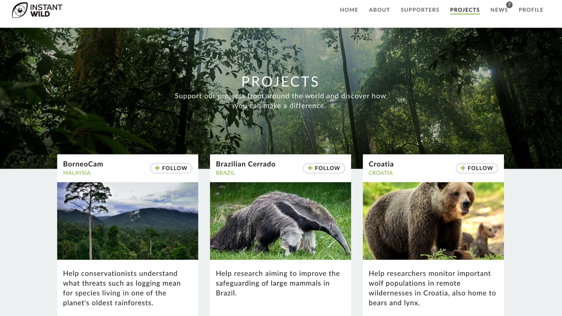 Homepage of ZSL Instant Wild website with photos of different wildlife.