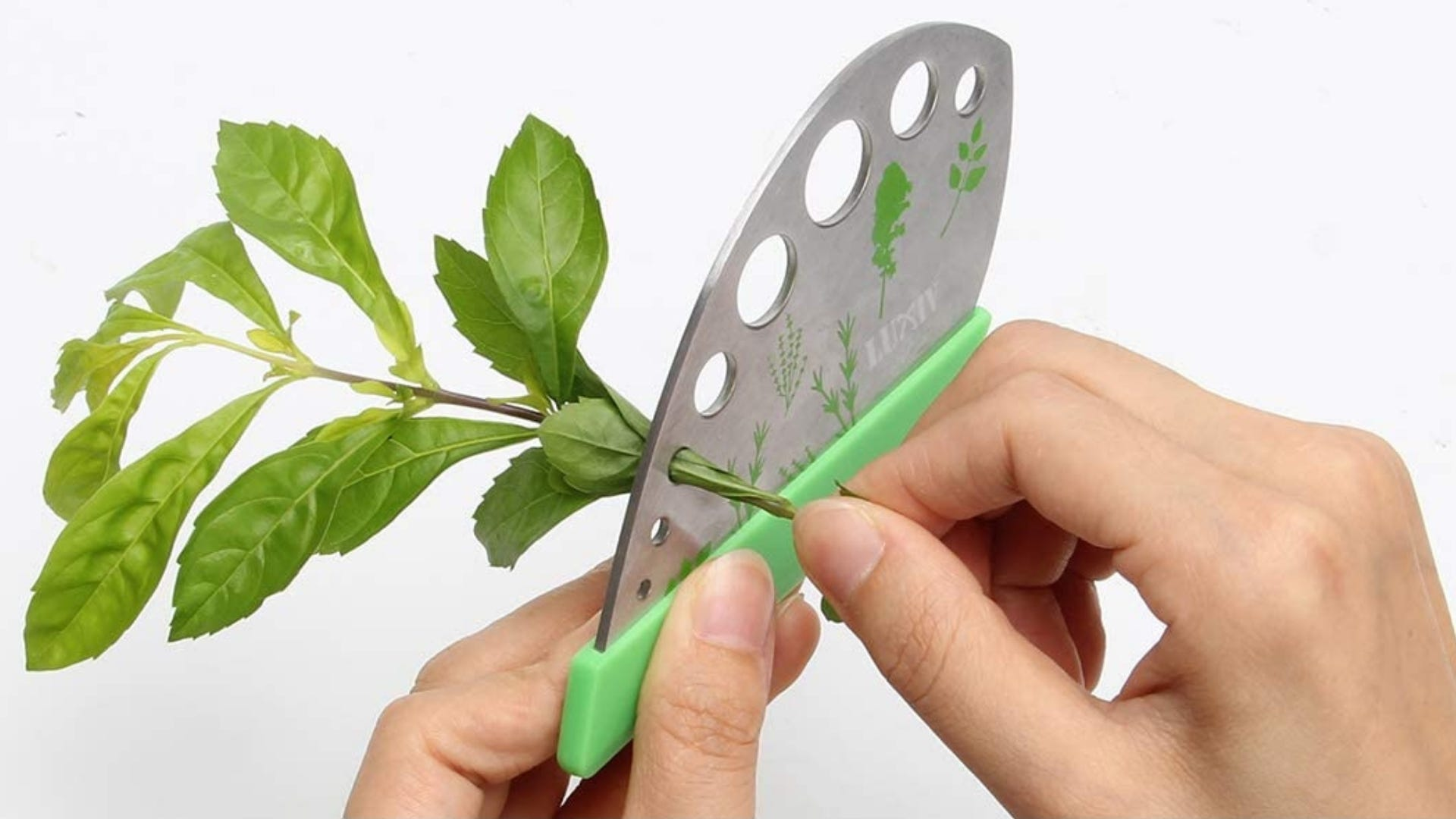 Person pulling herbs through herb stripper