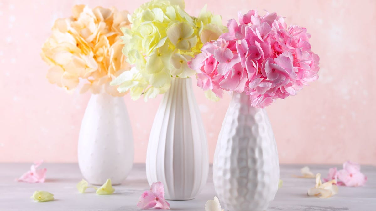 Three bouquets of hydrangea in white vases.