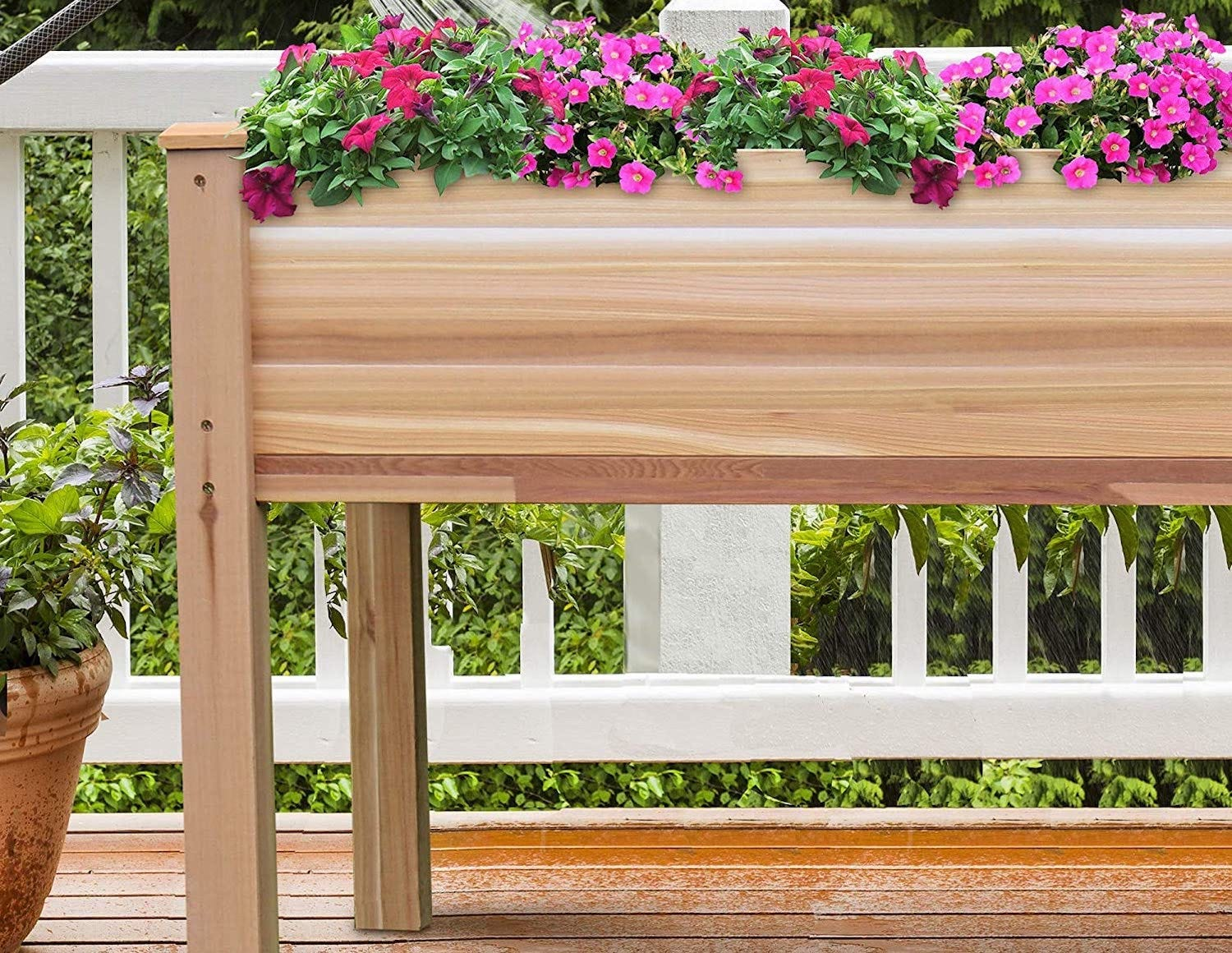 A raised planter bed, with wooden sides and legs, filled with colorful flowers