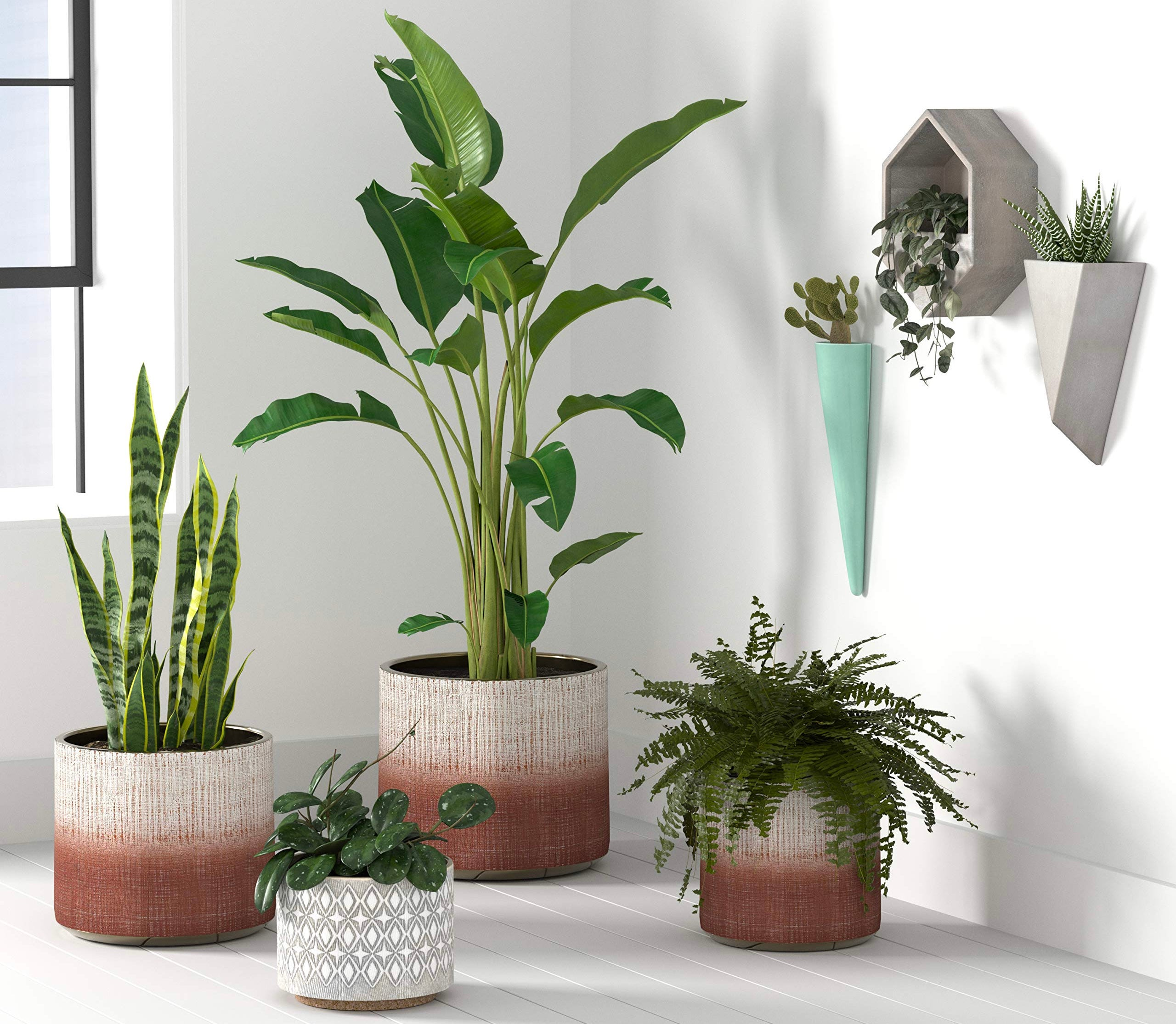 Several rust-and-white stoneware planters clustered in the corner of a room.