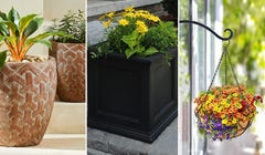 Spruce Up Your Porch, Deck, or Balcony with These 8 Planters