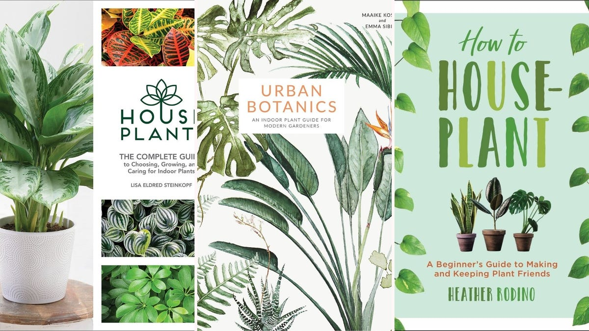 Three book covers, focused on happy and thriving houseplants.