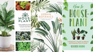 These Books Will Help You Keep Your Houseplants Alive (and Thriving!)