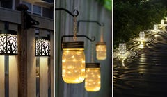 Add Some Drama to Your Yard with These Accent Lights