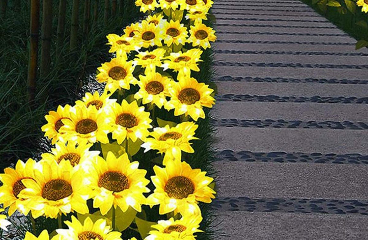 Bunches of solar-powered sunflower lights lining a garden walkway.