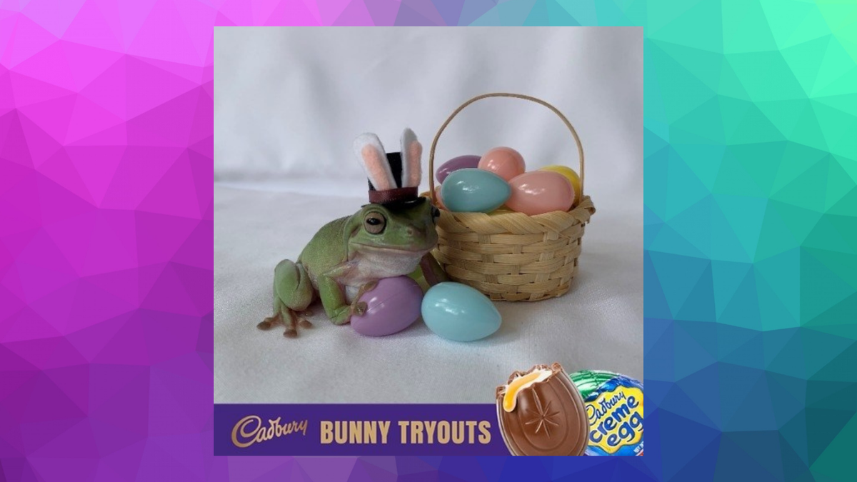 Betty the Cadbury frog, wearing bunny ears and sitting beside a tiny woven basket of Easter eggs.