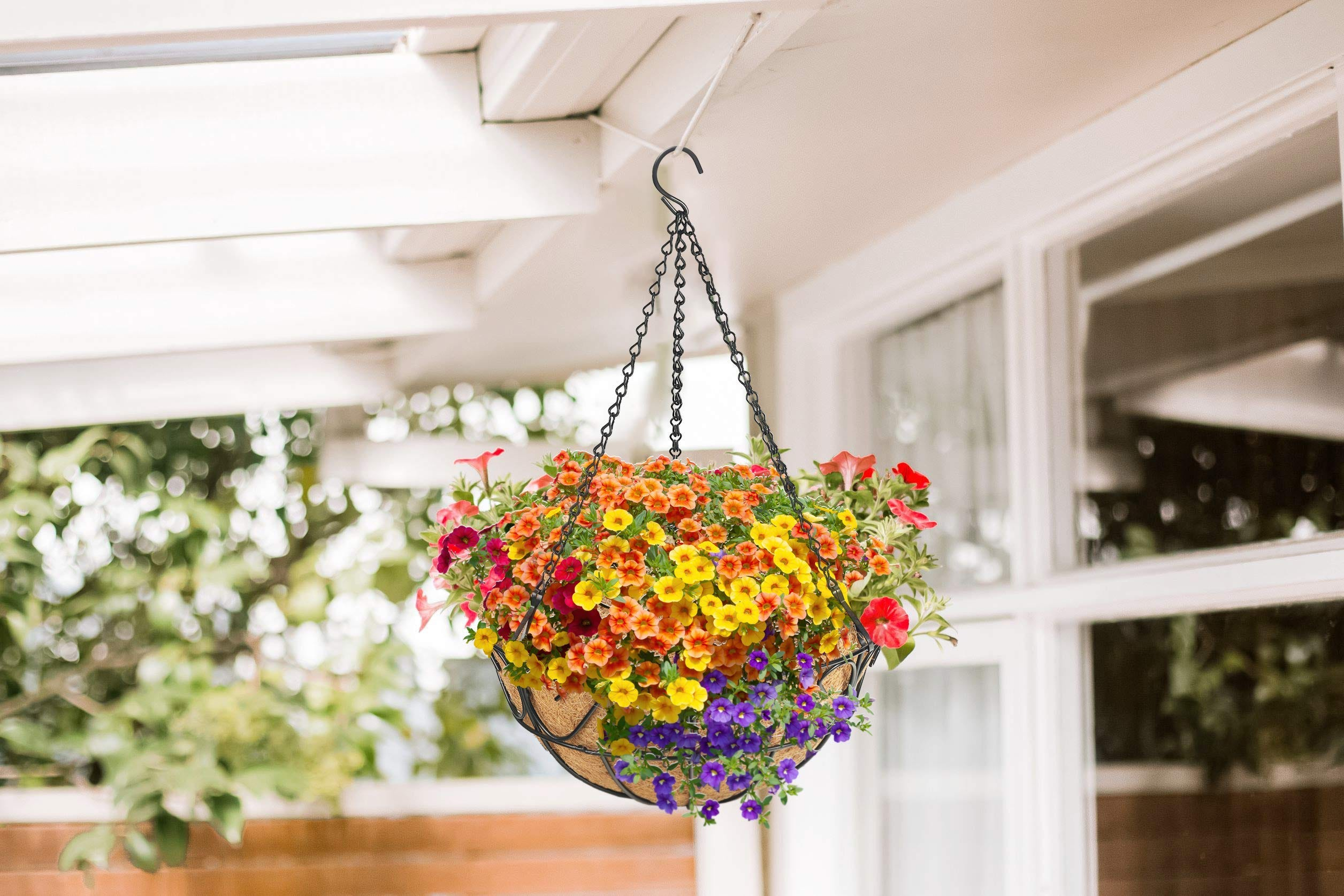 A hanging metal planter full of flowers on a porch.