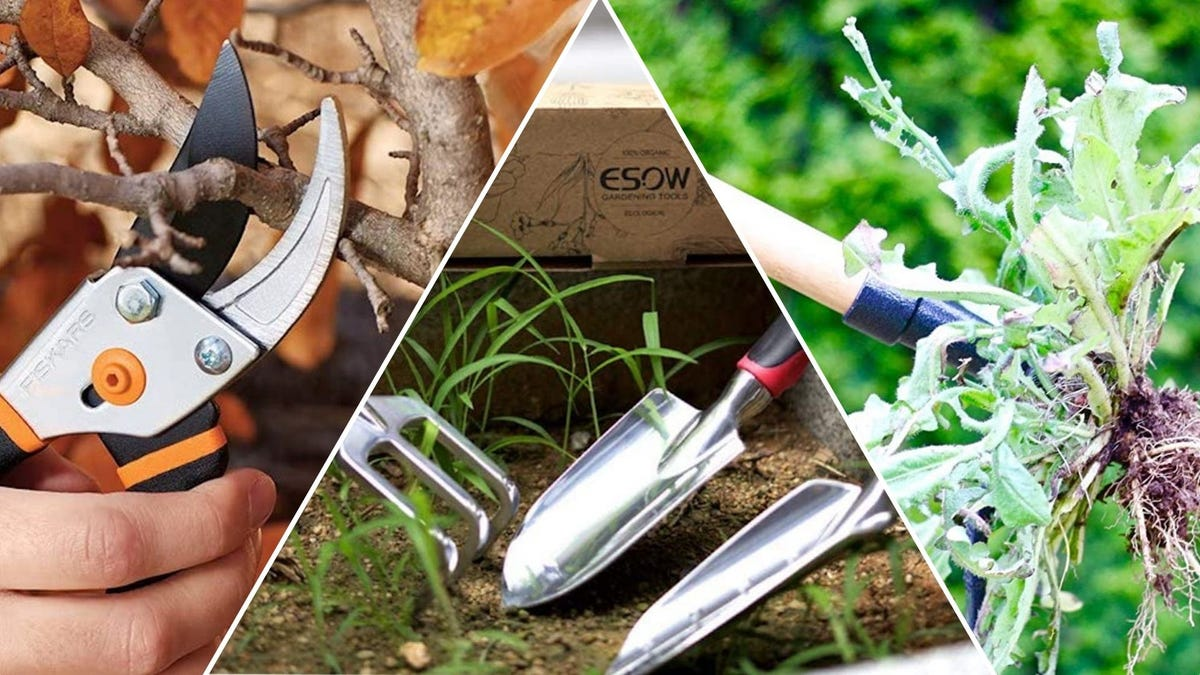 Garden tools: a set of pruning shears cutting a branch, two trowels and a rake sitting in dirt, a weed puller with a weed