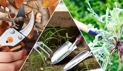 9 Must-Have Gardening Tools