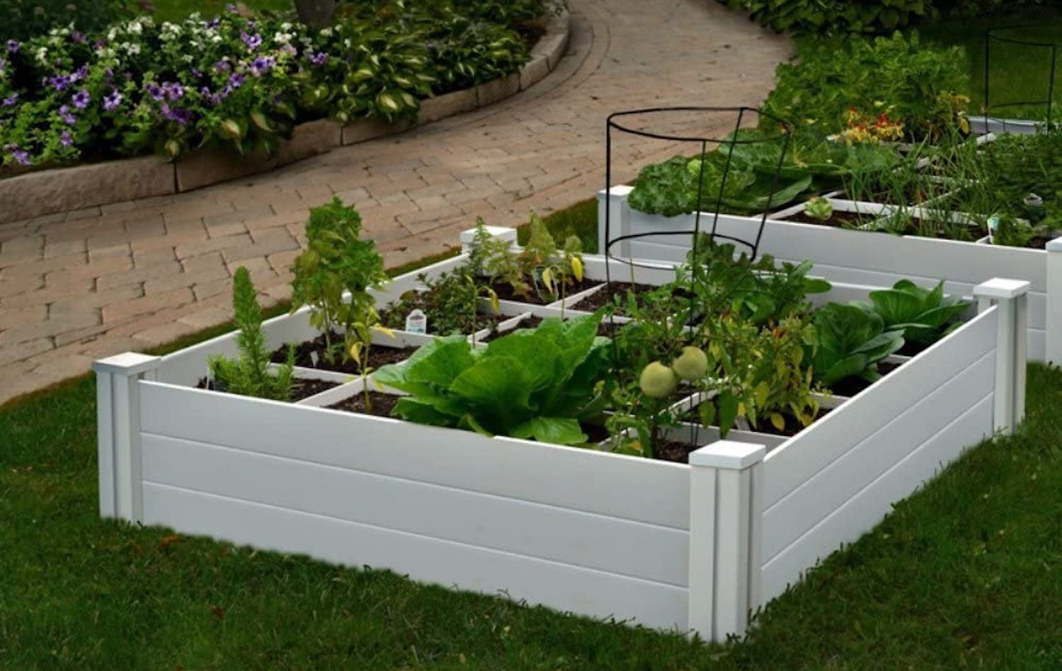 A white raised garden bed, filled with vegetables and with a grid pattern separating sections