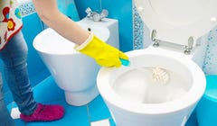 How to Make Your Toilet a Porcelain Throne of Cleanliness