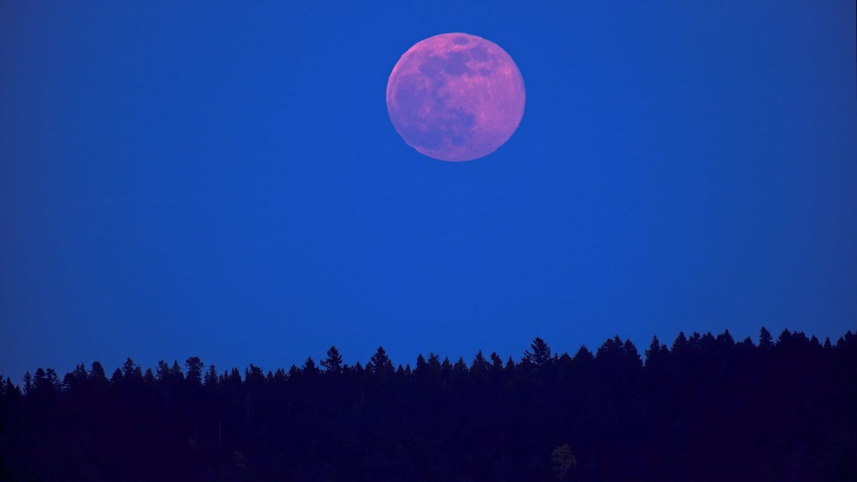 Pink supermoon over the Gulf Islands.