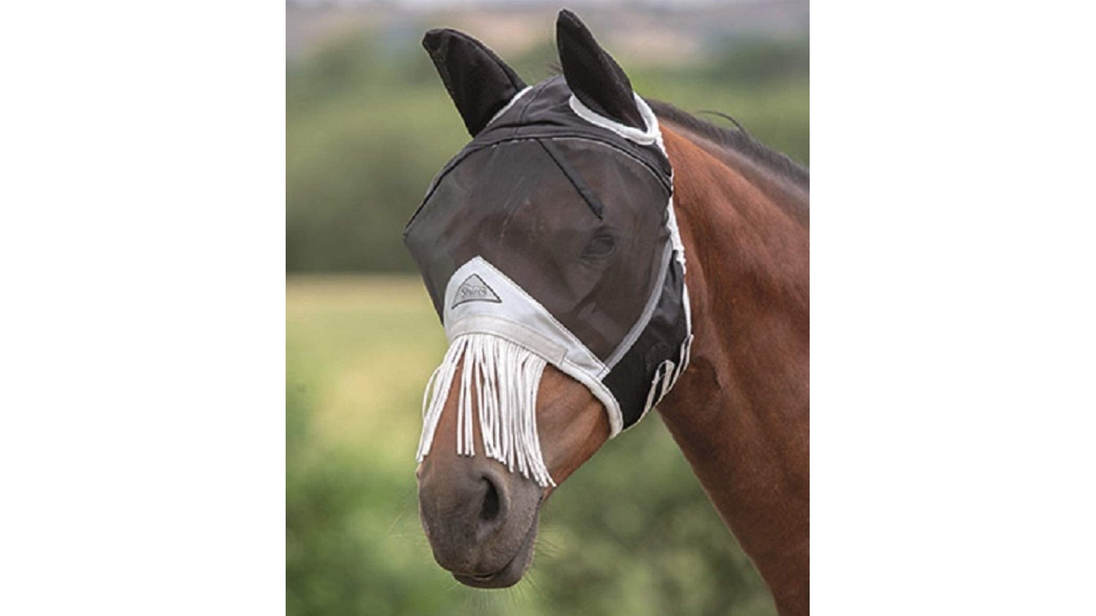 Dark brown horse wearing a black and white mask that features fringe ropes hanging over its nose.
