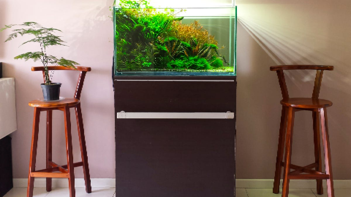 an aquarium on an aquarium stand in a home by two stools