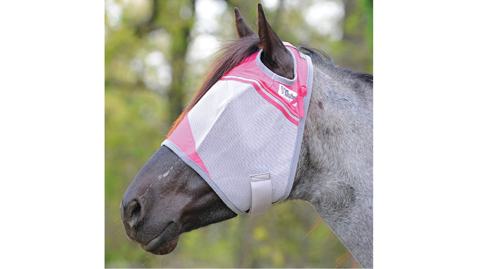 Grey horse wearing a grey and pink mask that reaches halfway down its muzzle and doesn't cover the ears.