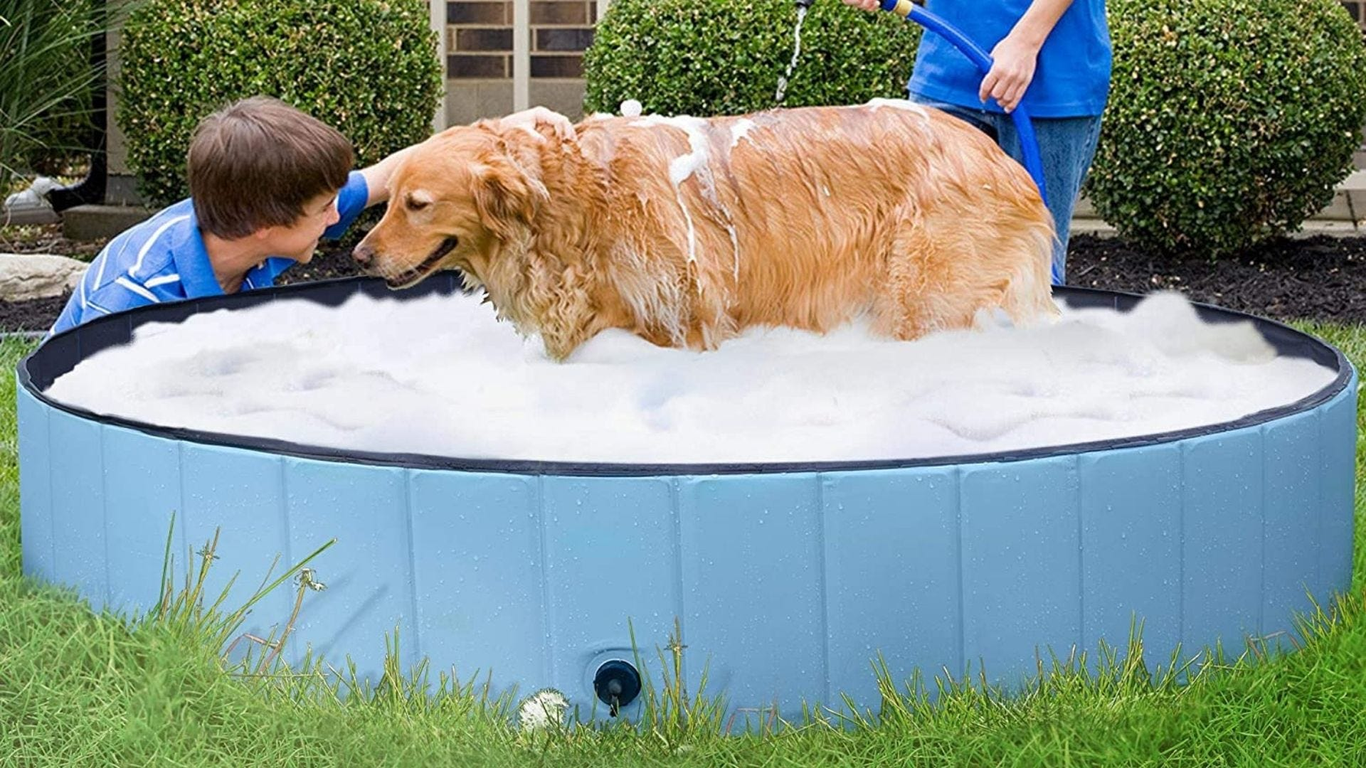A kid plays with a dog in a dog pool.