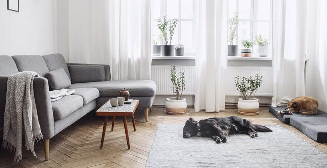 Spring Cleaning Day 16: Declutter and Dust the Living Room