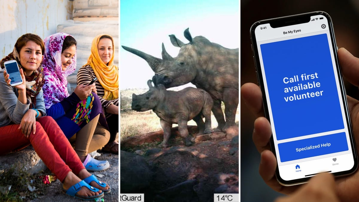 """A group of woman hold a phone and smile, two rhinos on a wildlife camera, a person holds a phone with """"Call first available volunteer"""" on the screen."""