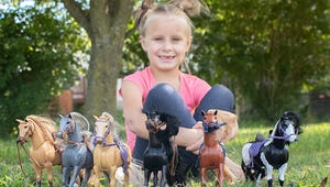 The Best Toys for Kids Who Love Horses